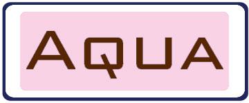 Aqua Fashion